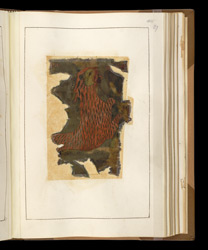 Lion, Symbol of St Mark, in a Burnt Fragment of a Gospelbook